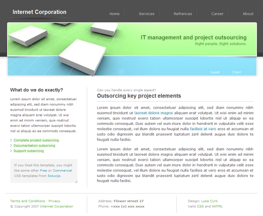 template gratuit - Management